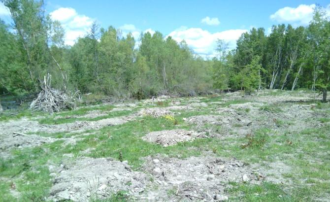 Tapado con tierra tras aporte y sellado